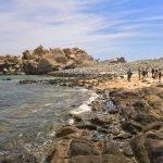 Mermaid_Beach